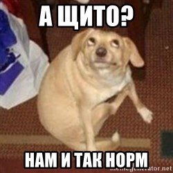 Oh You Dog - а щито? нам и так норм