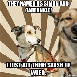 Stoner dogs concerned friend - they named us simon and garfunkle! I just ate their stash of weed.
