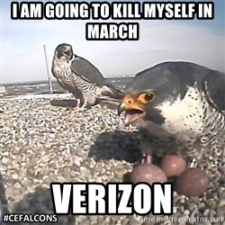 #CEFalcons - i am going to kill myself in march verizon