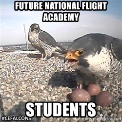 #CEFalcons - Future National Flight Academy Students