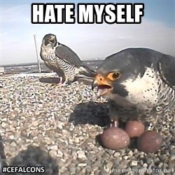 #CEFalcons - HATE MYSELF