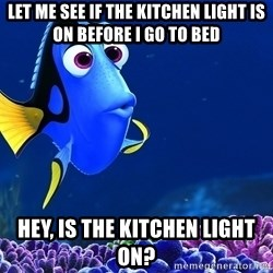 Forgetful Dori - let me see if the kitchen light is on before i go to bed hey, is the kitchen light on?
