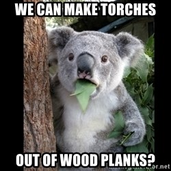 Koala can't believe it - We can make torches Out of wood planKs?