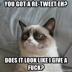 Grumpy Cat ={ - You got a re-tweet eh? Does it look like i give a fuck?