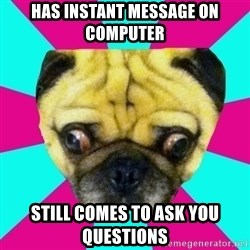 Perplexed Pug - has instant message on computer still comes to ask you questions