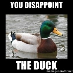 advice mallard - You DISAPPOINT  the duck