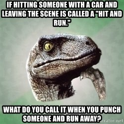 "Philosoraptor - If hitting someone with a car and leaving the scene is called a ""Hit and run."" What do you call it when you punch someone and run away?"