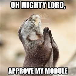 pray squirrel - Oh mighty lord, Approve my module