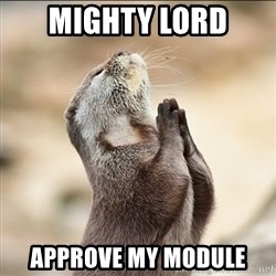 pray squirrel - Mighty lord Approve my module