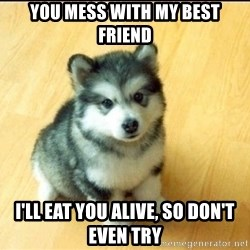 Baby Courage Wolf - you mess with my best friend i'll eat you alive, so don't even try