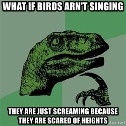 Philosoraptor - what if birds arn't singing they are just screaming because they are scared of heights