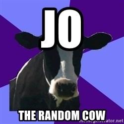 Coworker Cow - JO  THE RANDOM COW