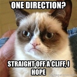 Grumpy Cat  - One Direction? Straight off a cliff, I hope