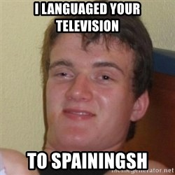 Really Stoned Guy - I LANGUAGED YOUR TELEVISION TO SPAININGSH