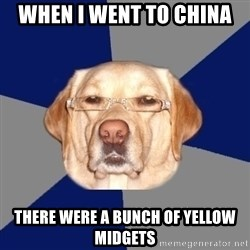 Racist Dog - when i went to china there were a bunch of yellow midgets