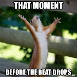 Praising Squirrel - That moment before the beat drops
