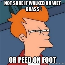 Not sure if meme 2342 - Not sure if walked on wet grass or peed on foot