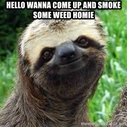Sarcastic Sloth - hello wanna come up and smoke some weed homie