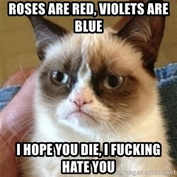 Grumpy Cat  - roses are red, violets are blue i hope you die, i fucking hate you
