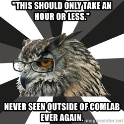 """ITCS Owl - """"This should only take an hour or less."""" never seen outside of comlab ever again."""