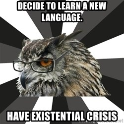 ITCS Owl - Decide to Learn a new language. have existential crisis
