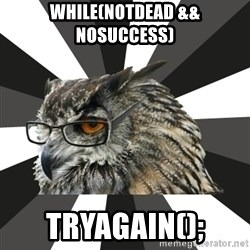 ITCS Owl - while(notdead && nosuccess) tryagain();