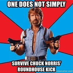 Chuck Norris  - one does not simply survive chuck norris' roundhouse kick
