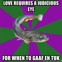 Judgemental Catfish - love requires a judicious eye for when to gaaf en tuk