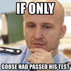 riepottelujuttu - IF ONLY  GOOSE HAD PASSED HIS TEST
