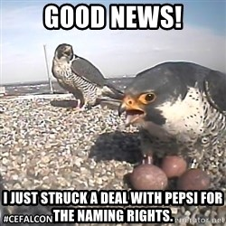 #CEFalcons - Good news! I just struck a deal with pepsi for the naming rights.