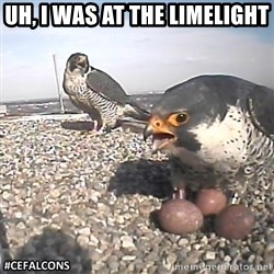 #CEFalcons - Uh, I was at the limelight