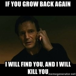 liam neeson taken - If you grow back again I will find you, and i will kill you