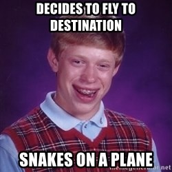 Bad Luck Brian - Decides to fly to destination snakes on a plane