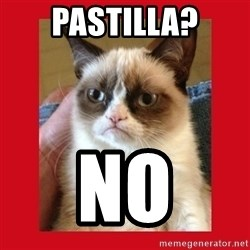 No cat - Pastilla? no