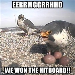 #CEFalcons - EERRMgGRRHHD We won the Hitboard!!