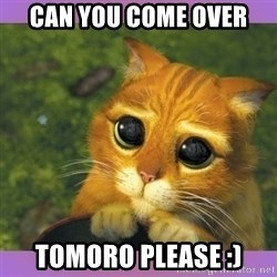 Apologetic Puss In Boots - Can you come oVer Tomoro please :)