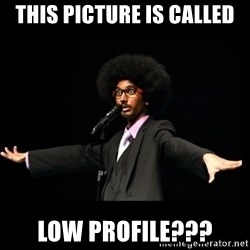 AFRO Knows - this picture is called low profile???