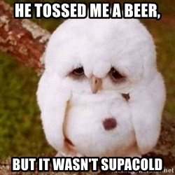 Depressed Owl - He tossed me a beer, But it wasn't supacold