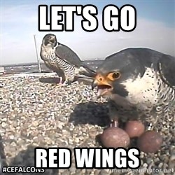 #CEFalcons - Let's go red wings