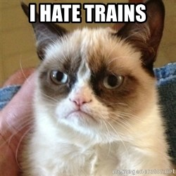 Grumpy Cat  - I HATE TRAINs