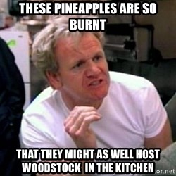 Gordon Ramsay - These pineapples are so burnt that They might as well host woodstock  IN THE KITCHEN