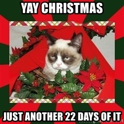 GRUMPY CAT ON CHRISTMAS - Yay Christmas Just another 22 days of it