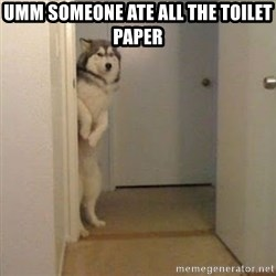 Perro del Lucho - UMM SOMEONE ATE ALL THE TOILET PAPER