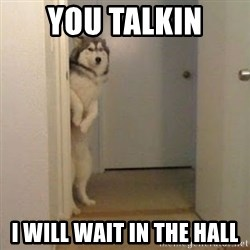 Perro del Lucho - YOU TALKIN  I WILL WAIT IN THE HALL