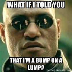 What If I Told You - what if i told you that i'm a bump on a lump?