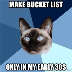 Chronic Illness Cat - Make Bucket List Only in my early 30s