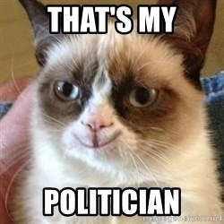 Tard the happy cat - That's my Politician