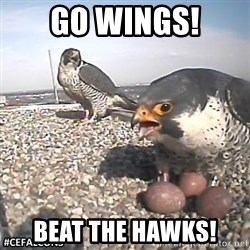 #CEFalcons - GO WINGS! BEAT THE HAWKS!