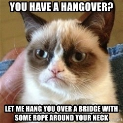 Grumpy Cat  - you have a hangover? let me hang you over a bridge with some rope around your neck