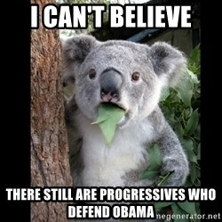 Koala can't believe it - I can't believe THERE STILL ARE PROGRESSIVES WHO DEFEND OBAMA